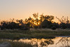 Sunrise over the Okavango